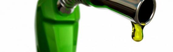 Portugal aprueba el gasóleo profesional a partir del 2017