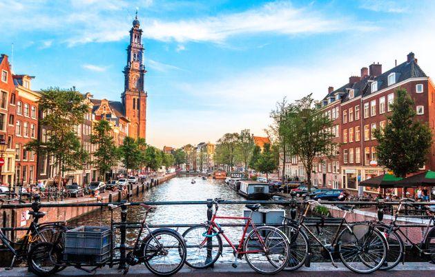 representante en Holanda
